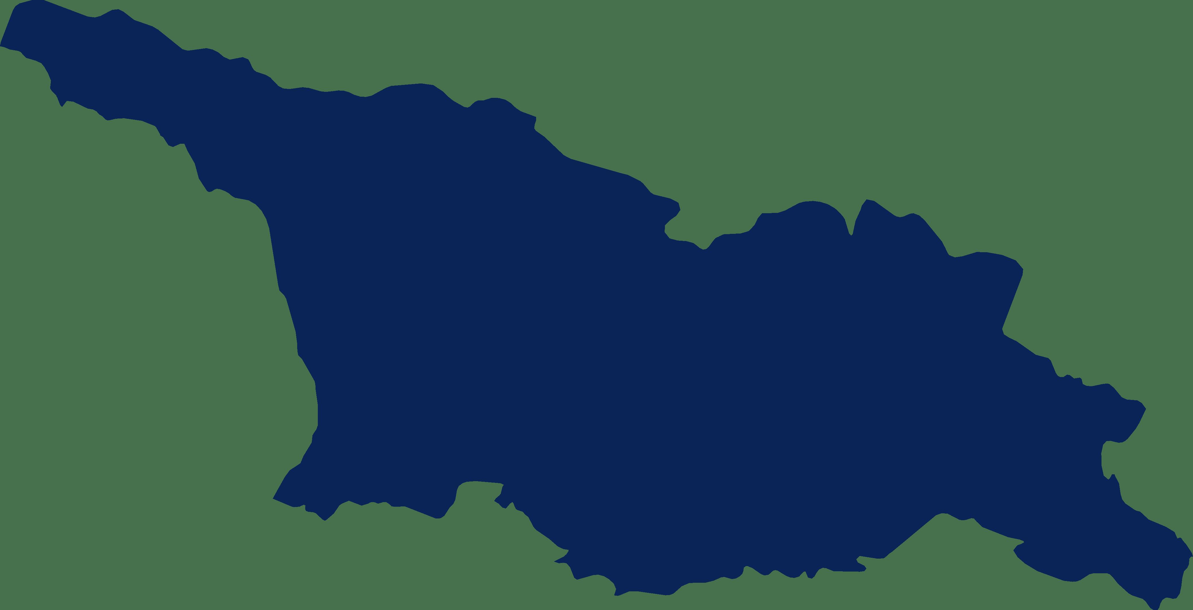 costituzione-società-llc-georgia-cognitor